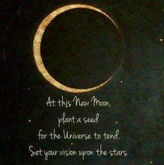 Aquarius Moon | Purplerays