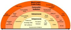 Intro to Social Work: Understanding Macro, Mezzo, and Micro Levels of Analysis - Social Work Helper