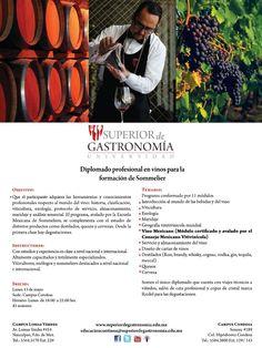Diplomado profesional en vinos para la formación de Sommelier / Inicia 13 Mayo 2013 / Superior de Gastronomía / #DF