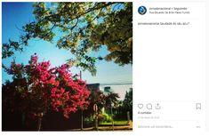 Desktop Screenshot, Instagram, Step By Step, May 27, Blue Skies, 10 Years, Journaling, Backgrounds, Fotografia