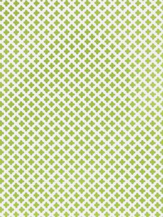 Dana Gibson for Stroheim's Little Lanin wallcovering in color Grass. #coloroftheyear #greenery