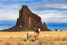 A lone wild horse at Shiprock in New Mexico. Mexico Travel, Mexico Trips, Shiprock New Mexico, Natural Structures, New Mexican, Land Of Enchantment, Horse Pictures, United States Travel, Wild Horses