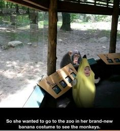 Funny Pictures of the week pics- She Wanted To Go To The Zoo In Her Banana Costume Funny Shit, Haha Funny, Funny Cute, Funny Memes, Funny Stuff, That's Hilarious, Funny Pranks, Funny Things, Jokes