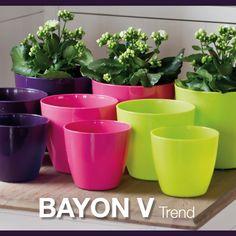 #BAYON V collezione Tang Linea vasi per interno #lineagarden #marchioro