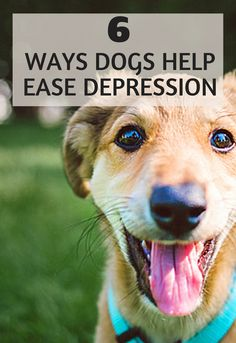 6 Ways Dogs Help Ease Depression Symptoms