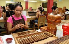 La ruta de fabricación de un puro premium nicaragüense • El Nuevo Diario