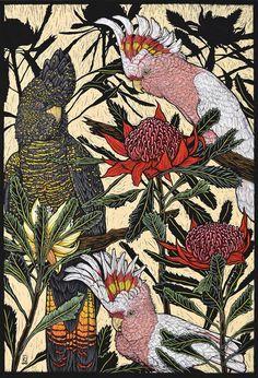 Birds 1 - Linocuts — Rachel Newling - Cockatoos & waratah 76 x 57 Cm . Edition of 50 Hand Coloured Linocut on Handmade Japanese pa - Art And Illustration, Botanical Illustration, Linocut Prints, Art Prints, Australian Birds, Bird Artwork, Cockatoo, Aboriginal Art, Botanical Art