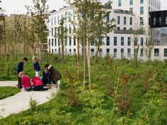 chartier dalix school for sciences and biodiversity boulogne-the elevated garden results in pleasant external views from the school's neighboring apartments