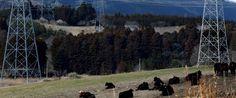 Japón quiere que Fukushima sea sede de los Juegos Olímpicos 2020