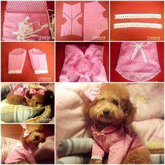DIY Cute Pink Dog Shirt | LovePetsDIY.com