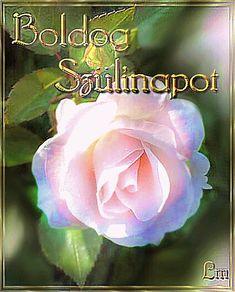 Happy Birthday, Rose, Flowers, Plants, Happy Brithday, Pink, Urari La Multi Ani, Happy Birthday Funny, Plant