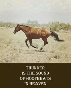 """Thunder is the sound of hoofbeats in heaven."" ~~I would like to think so. <3"