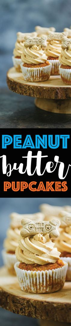 Peanut Butter Pupcakes - Treat your pup with these dog-friendly cupcakes filled with pumpkin, applesauce and carrots topped with a peanut butter frosting!