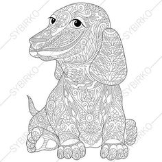Dachshund Sausage Dog Coloring Page. Adult by ColoringPageExpress