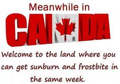 Meanwhile in Canada added a new photo. - Meanwhile in Canada Canadian Memes, Canadian Things, I Am Canadian, Canadian Girls, Canadian Humour, Canadian Bacon, Canada Jokes, Canada Funny, Canada 150