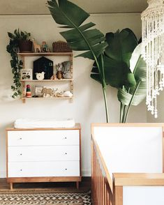 Unusual Article Uncovers The Deceptive Practices Of Tropical Nursery Neutral 6 - Pecansthomedecor Baby Bedroom, Nursery Room, Kids Bedroom, Nursery Decor, Nursery Ideas, Girl Nursery, Kids Rooms, Bedroom Decor, Room Baby
