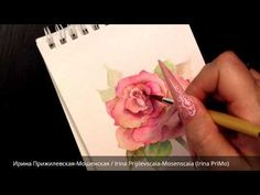 Акварельная роза/Watercolor rose/Aquarelle rose