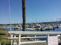 San Diego Mission Bay San Diego Mission, Mission Bay, San Diego Beach, Marina Bay Sands, Building, Travel, Viajes, Buildings, Destinations