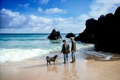 From Visit Scotland Pet Friendly Holidays In A Walk Their Dog On
