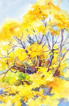 "Autumn tree watercolor painting ""Sunny maple"" - original yellow forest painting, watercolor on paper"