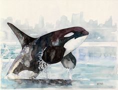Orca Painting  Print from Original by TheColorfulCatStudio on Etsy, $16.00