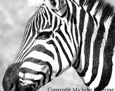 1048 best Zebra Art images on Pinterest in 2018 | Zebra ...