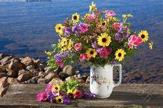 Kuvahaun tulos haulle värikäs kukkakimppu