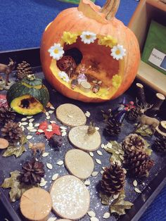 Our Pumpkin inspired small world ✨✨✨ #EYFS #earlyyears #smallworld #pumpkin #storytelling