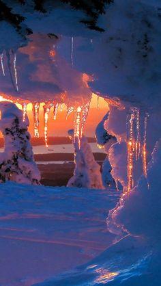 Beautiful snow scene ツ ❄
