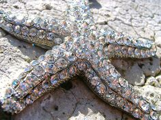 Treasures Of the Deep Gorgeous Sparkling by TheBluScarab on Etsy, $25.00