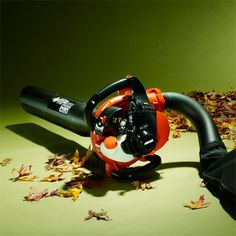 Photo: Mark Weiss | thisoldhouse.com | from TOH Tested: Leaf Blowers