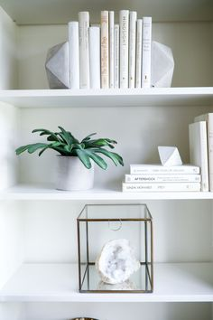 Living With Landyn Ikea Bookshelf Hack, Ikea Billy Bookcase, Built In Bookcase, Bookcases, Wall Bookshelves, Diy Home Office Furniture, Furniture Decor, Living With Landyn, Billy Regal