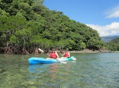 How to make the most of one day in the Daintree #howto #rainforest #travel