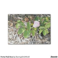Pretty Pink Rose Post-it® Notes