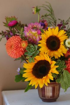 succulents, sunflowers, snapdragons, asters, dahlias