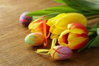Flowers Tulips and Decorated Eggs - daily jigsaw puzzle - play online at: http://www.jspuzzles.com/puzzle.php?puzzle=2456590&pin