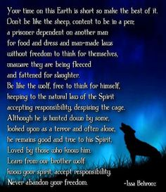 Native American Wisdom- be like the wolf Native American Prayers, Native American Spirituality, Native American Wisdom, Native American History, American Indians, Animal Spirit Guides, Spirit Animal, Wolf Spirit, Wolf Quotes