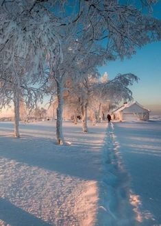 Winter Love, Winter Snow, Winter Pictures, Nature Pictures, Winter Photography, Nature Photography, Winter Scenery, Nature Aesthetic, Winter Beauty