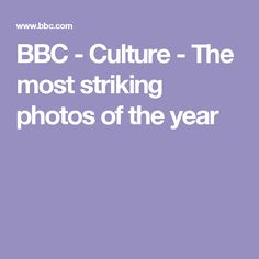 BBC - Culture - The most striking photos of the year