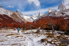 Trekking in Patagonia - Our main activity in Patagonia was walking. We walked a few hundred kilometers, step by step, trail by trail, amazed at every step. This was one of the most beautiful days, with winter making an unexpected appearance, transforming the landscape.  Patagonia, 2016. www.doruoprisan.com