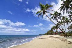 Ocean Harbor - Fiji Islands - null