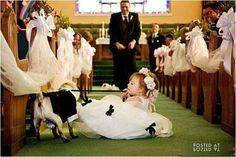 i will have a dog in my wedding all because of this picture. ha!