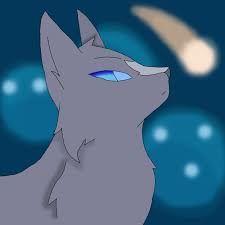 Afbeeldingsresultaat voor sss warrior cats