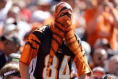 PsBattle: Sports fan with a dyed bear...