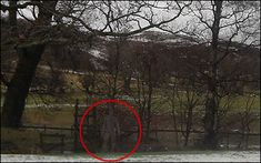 From The Sun UK: This ghostly figure was snapped by a holidaymaker on the moors of North Yorkshire — and experts reckon the eerie photo is GENUINE.