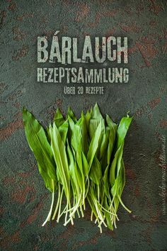 Wild garlic recipe collection with over 20 recipes make delicious Bärlauch – Rezeptsammlung mit über 20 Rezepten Garlic Recipes, Vegan Recipes, Detox Cleanse For Weight Loss, Wild Garlic, Party Buffet, Wheat Grass, Detox Drinks, Growing Vegetables, Recipe Collection