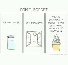 don`t forget, drink water, get sunlight. you`re basically a house plant with more complicated emotions.