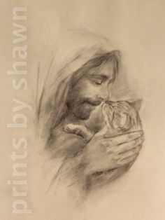This is a signed print of a charcoal by Shawn Costello. It is about in size on heavy paper. Watermark will not be present on mailed print. Crazy Cat Lady, Crazy Cats, Beautiful Cats, Animals Beautiful, I Love Cats, Cute Cats, Animals And Pets, Cute Animals, Jesus Drawings