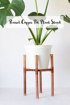 Is it OK to want to make everything out of copper now? I think so. After making the mini pot plant holder, I just had to createmore. I've already told you about my obsession with plants, so naturally the next projectwas a way to bring a new plant into the house. This raised copper pot …