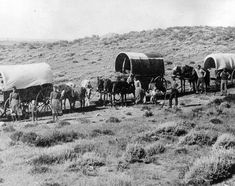 Wagon train heading west over the plains of eastern Colorado